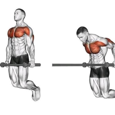 chest dips exercise   workout trainer  skimble
