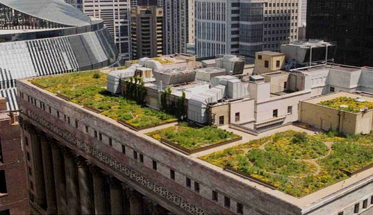 Inhabitat: GREEN ROOFS by Jill Fehrenbacher / November 13, 2005