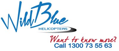 We Are Moving! | Wild Blue Helicopters