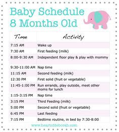 1000+ images about BABY HOOT on Pinterest