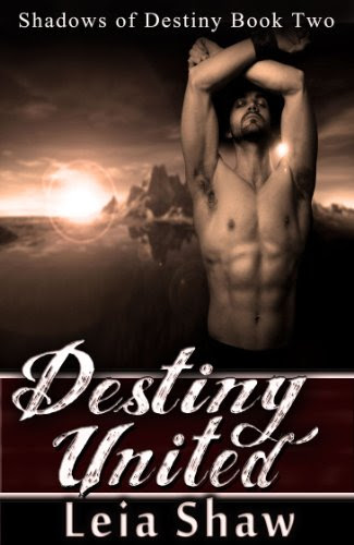 Destiny United (Shadows of Destiny) by Leia Shaw