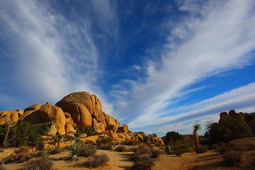 IMG_2238 Jumbo Rocks, Afternoon