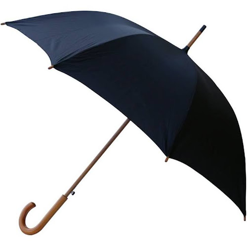 RainWorthy 48-inch Luxury Wood Handle Umbrella - L Black