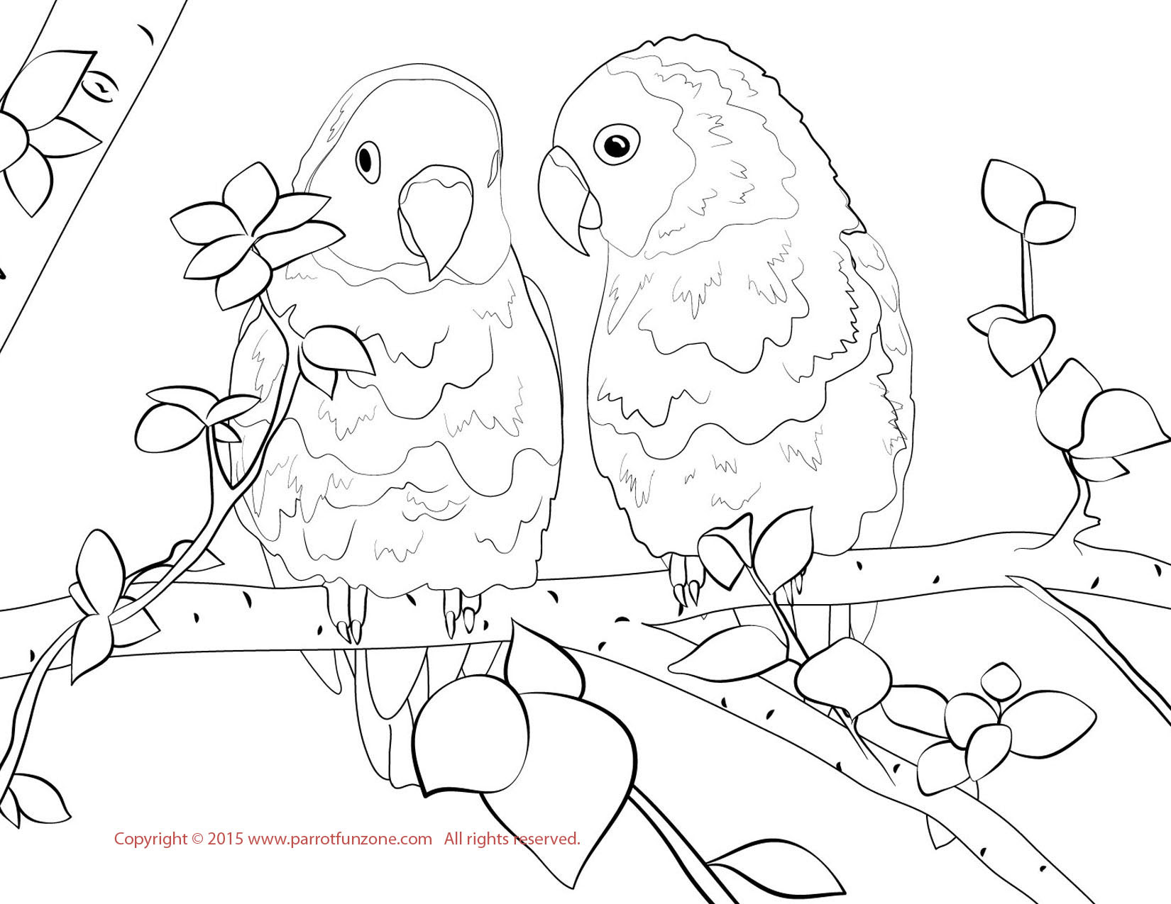 Wild Bird Coloring Pages at GetColorings.com | Free ...