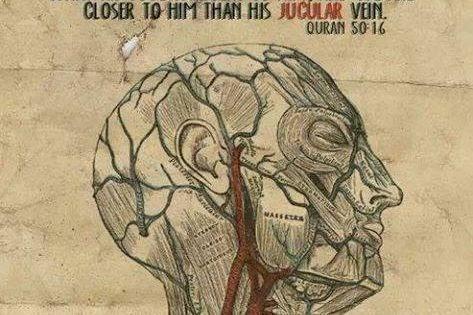 #Quran and #Science : #Allah is #Closer to #Man #than his #JUGULAR #VEIN . - http://pinterest.com/pin...
