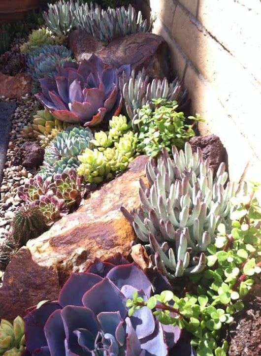 15 Amazing Rock Garden Design Ideas - YARD SURFER