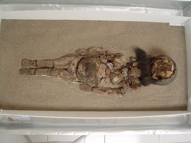 Otras de las momias de Chinchorro que se está desintegrando debido a los efectos del cambio climático.