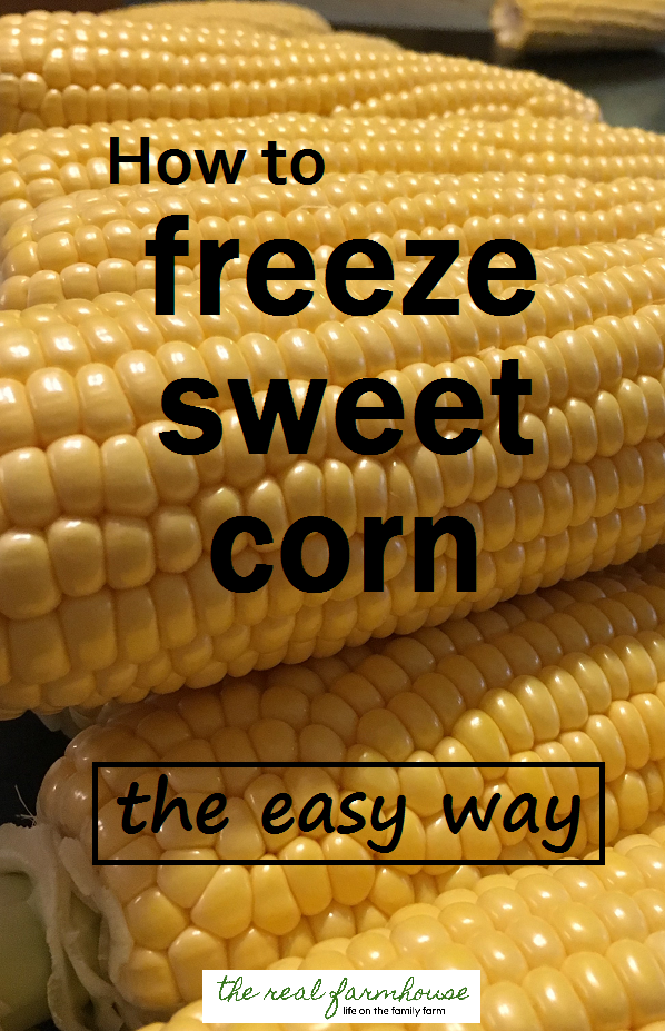 How to freeze sweet corn the easy way