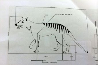The design of the life sized Tasmanian tiger silhouette.