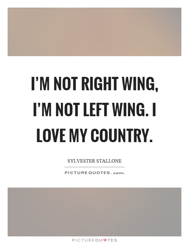 Im Not Right Wing Im Not Left Wing I Love My Country Picture