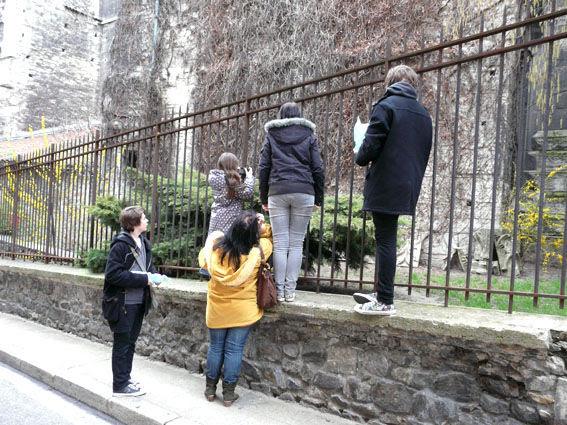 Visite___Vienne