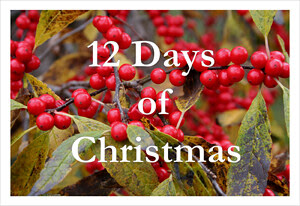 12_days_of_christmas2