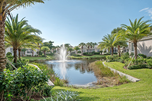 Our Listings - DNA Florida Real Estate