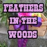 Feathers in the Woods
