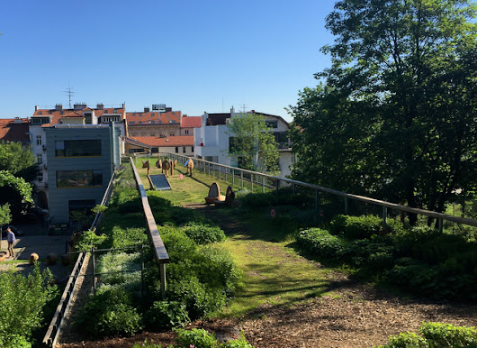 Czech buildings to be given financial support to implement green roofs