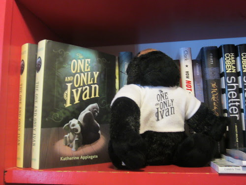 The One and Only Ivan Found His Book at Lemuria Books