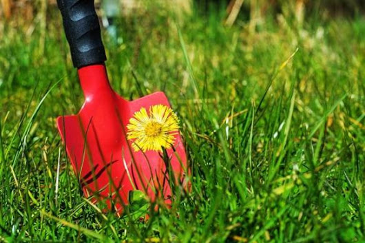 Beat those weeds — without chemicals - Business - The Boston Globe