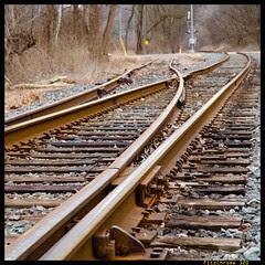 Switch Tracks