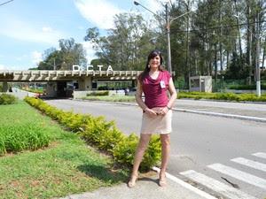 Lilian trabalha na aeronáutica há 34 anos (Foto: Camilla Motta/G1)