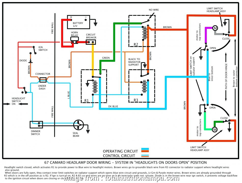 Diagram 2 Pole Light Switch Wiring Diagram Full Version Hd Quality Wiring Diagram Diagrambarbaf Fitetsicilia It