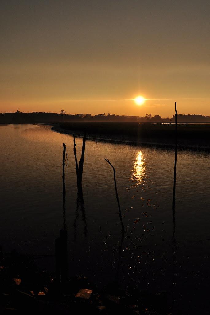 Parker's Creek Sunset