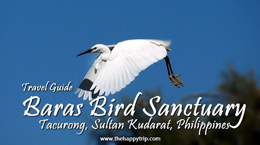 BARAS BIRD SANCTUARY, TACURONG, SULTAN KUDARAT | TRAVEL GUIDE  | The Happy Trip