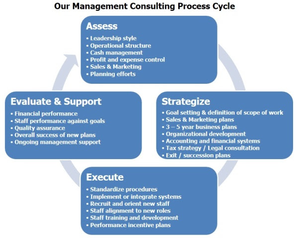 What is Consultancy and the Consulting Process