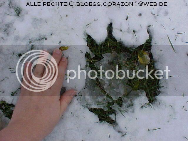 photo Spuren07.jpg