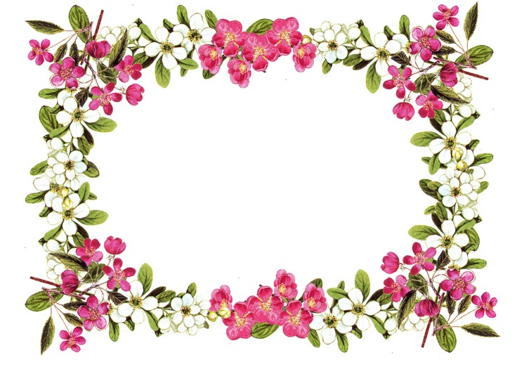 Floral Page Borders Png