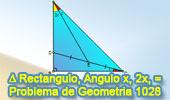 Problema de Geometría 1028 (English ESL): Triangulo Rectángulo, Angulo Doble, Punto Medio y Congruencia