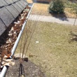 Recent Gutter Cleaning St. Louis, MO – February 16, 2017