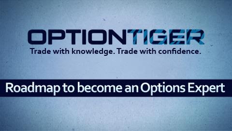 What does it take to become an Options Trading expert ?  at OptionTiger.com