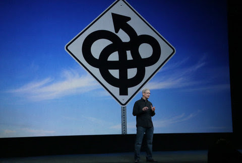 Timothy D. Cook, Apple's chief, has been promising new categories of gadgets from Apple for two years.