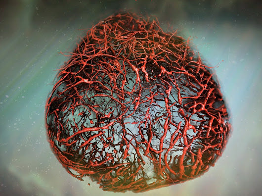 Scientists grow perfect human blood vessels in a petri dish