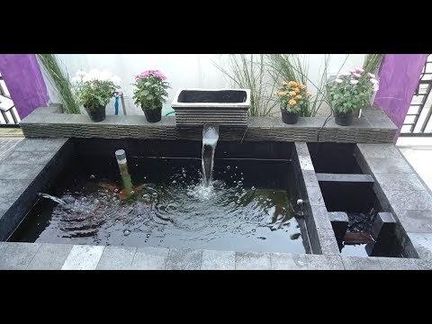 gambar sketsa kolam ikan koi - gambar ikan hd