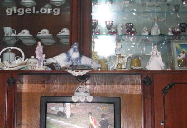 Mulţumesc gigel.org pentru exemplul incorect de amenajare a vitrinei. Cea din imagine este o vitrină satanică, deoarece nu reflectă Satana din televizor ci - dacă sunteţi atenţi - icoana de pe perete cu bunul Iisus.