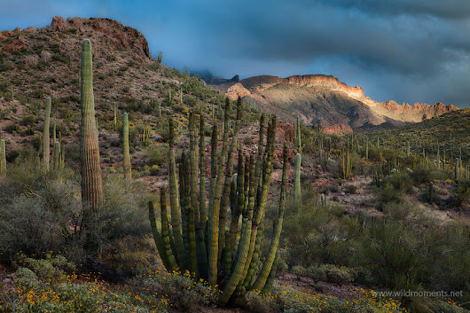 Arizona's Top 3 National Monuments Part 2