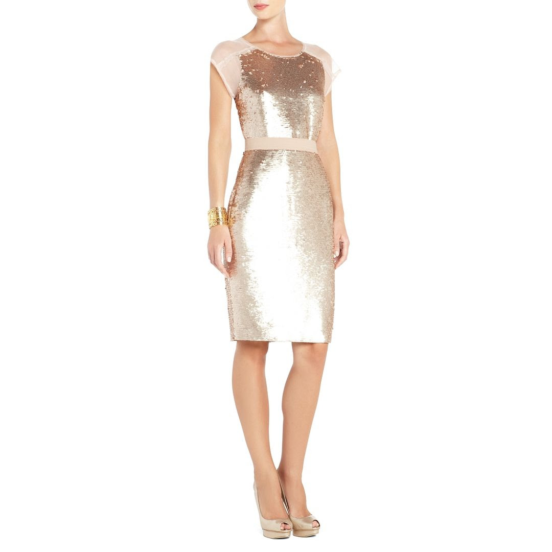 BCBGMAXAZRIA Chara Sequined Evening Dress