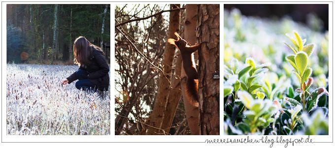 http://i402.photobucket.com/albums/pp103/Sushiina/newblogs/blog11_zpsd1e9bff1.jpg