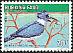 Collared Kingfisher Todiramphus chloris