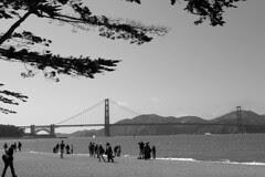 Golden Gate Bridge 75th Anniv  - Beach tidal marsh