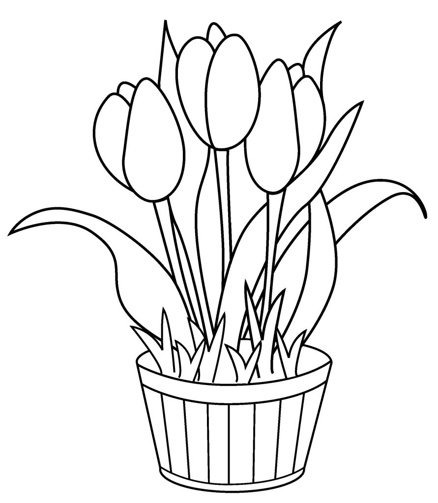 Gambar Mewarnai Bunga Dalam Pot Mewarnai F