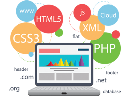 Web App Development, Web Application Developers, Lucknow, India | Bizs Point