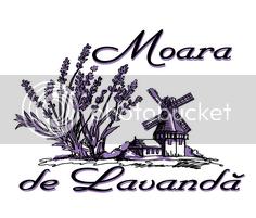 photo logo_lavanda mic.png