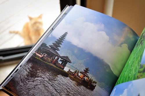 BlurbBook4