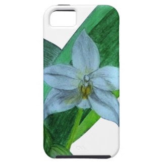 iPhone Case with White Terrestrial Orchid iPhone 5 Cases