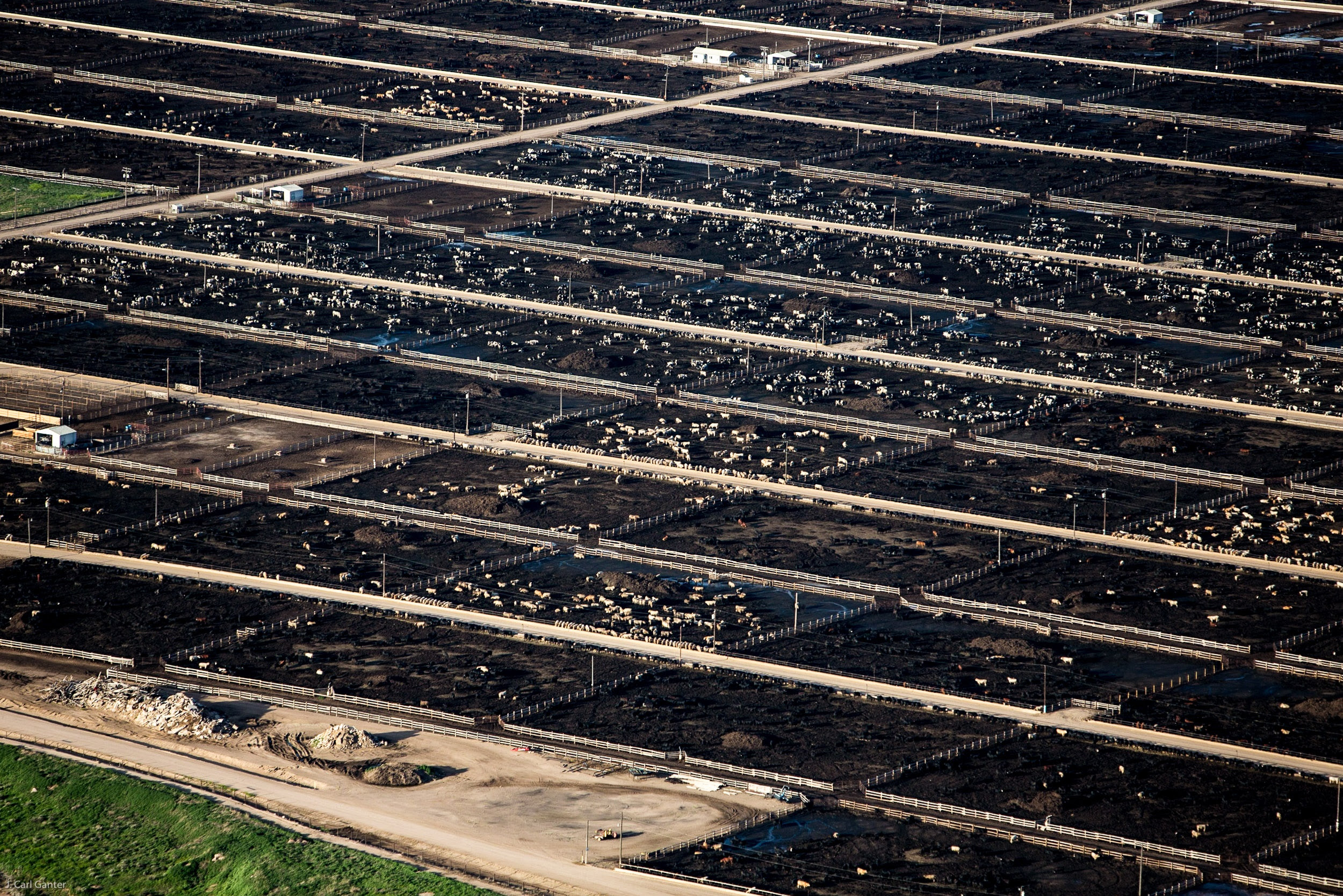 EPA Turns Away from CAFO Water Pollution - Circle of Blue
