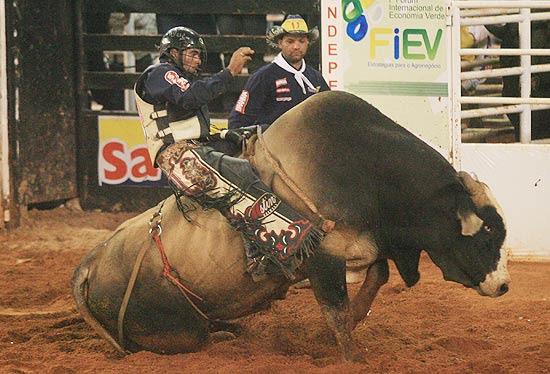 Peão James Willian Marris no touro que caiu nos primeiros pulo e saiu da arena arrastando as patas