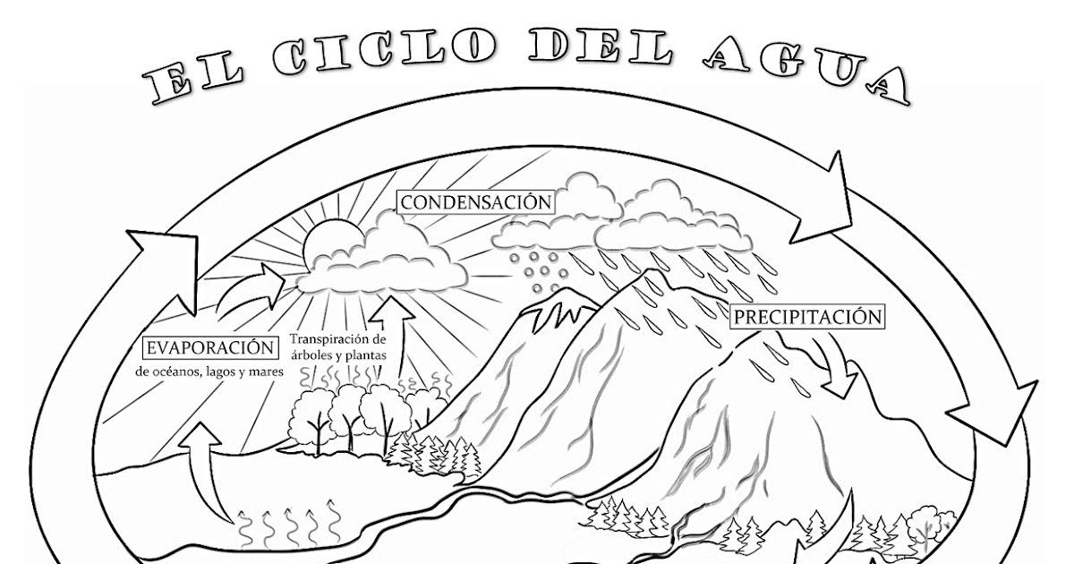 Recursos Educativos Primaria Ciclo Y Tipos De Agua
