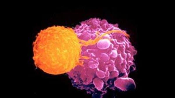 """مخاوف """"صحية"""" تعرقل استخدام عقاقير واعدة للسرطان"""